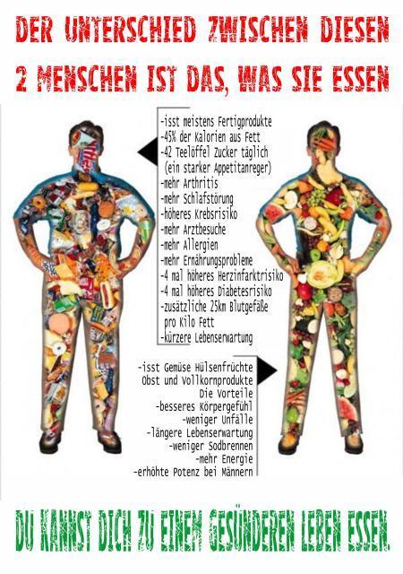 vegane eiweißshakes zum abnehmen