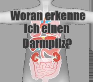 darmpilz symptome