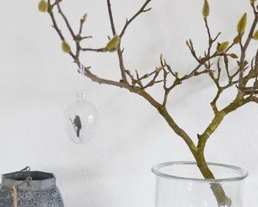 Frühlingsstrauch Magnolie und DIY Paperbag