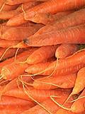 Unsere Ernährung - wichtige Vitamine und Nährstoffe bei der täglichen Nahrungsaufnahme