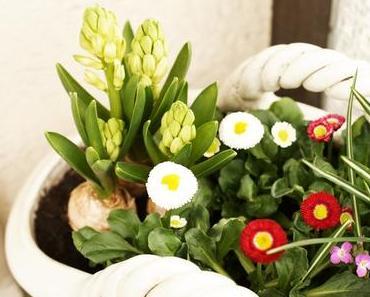 {TYPISCH FÜR} Der Frühling ist da!