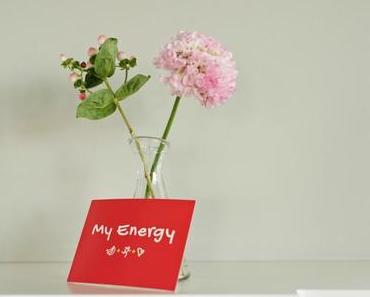 Dole Energy Day: The truth about your personal Energy-Code