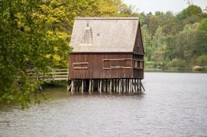 Das eigene Baumhaus