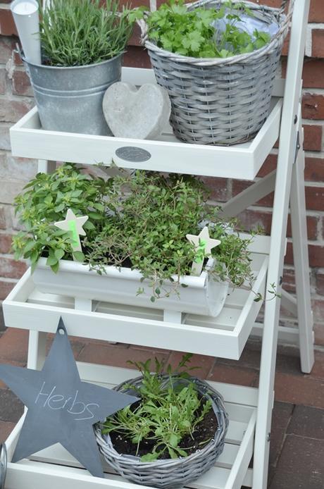 Palette Herb Garden