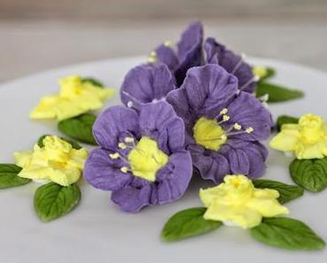 Rojal Icing Blumen Torte + Kurs