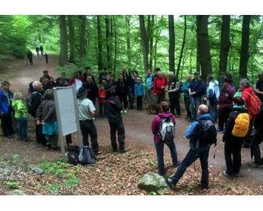 Die erste Ranger-Tour im Nationalpark Hunsrück-Hochwald – der Keltenwall